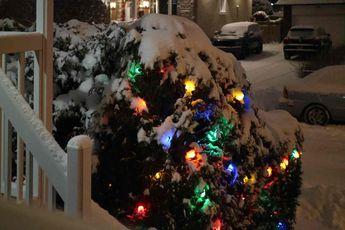 First snow.. © 2018 nicole leduc