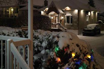 first snow!! © 2018 nicole leduc