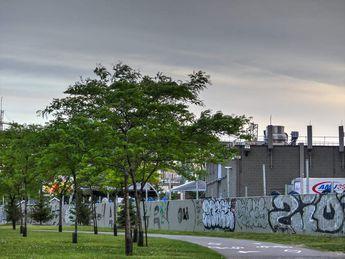 night view in Montréal.qc.canada © 2018 nicole leduc