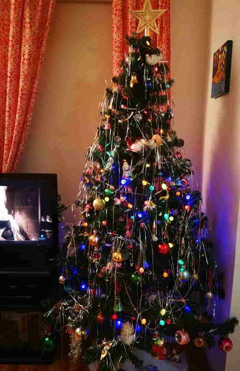 Christmas © 2018 nicole leduc
