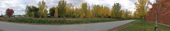 Début automne © 2016 nicole leduc