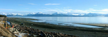 People walk the beach in Homer Alaska