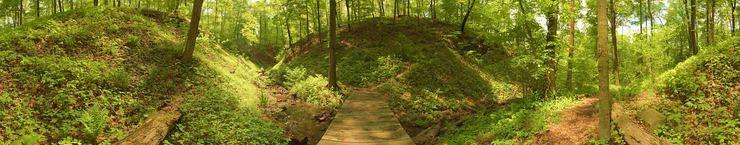 The Trillium Trail © 2003 John Strait