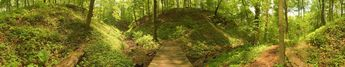 The Trillium Trail © 2003 John Strait